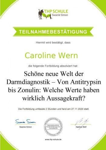 Teilnahmebestätigung_Webinar_Darmdiagnostik