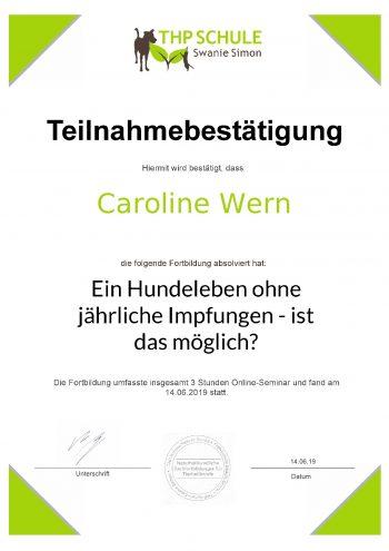 Teilnahmebestätigung_Webinar_Impfungen