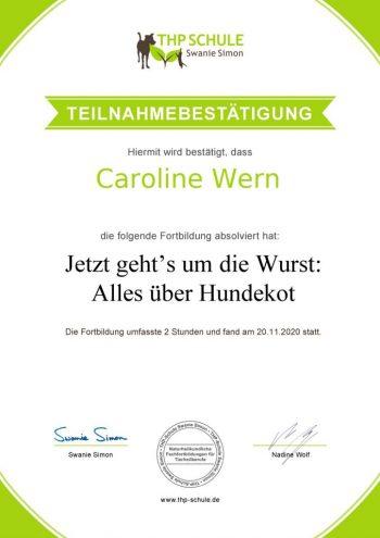 Teilnahmebestätigung_Webinar_Kot