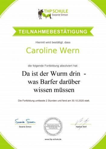 Teilnahmebestätigung_Webinar_Würmer